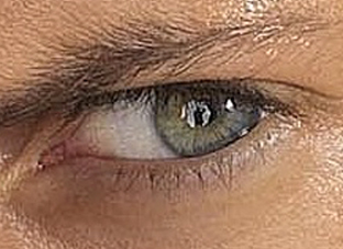 The eye of Wentworth Miller
